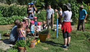 Gardeners gather at the Garden Incubator at John Taylor Park, one of the many community gardens that make up the City's Common Ground program. Image Source: https://www.lawrenceks.org/sustainability/food