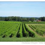 Chautauqua County, NY