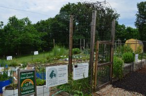 Local government support for urban agriculture has contributed to its rise in Wyandotte County. Image Source: American Farmland Trust